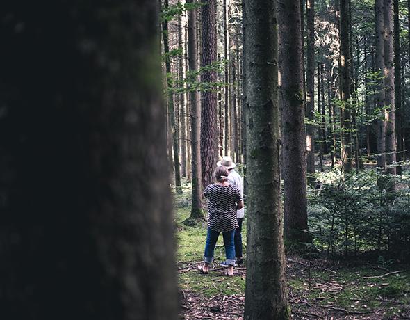 Wald und Wiese tischen auf